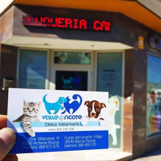 clínica veterinaria valle de ricote